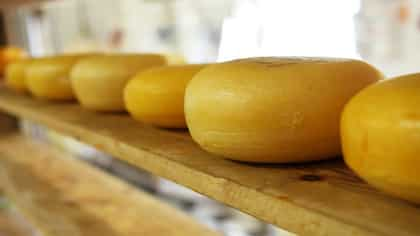 From Portugal To Bengal, This Bandel Cheese Speaks Volumes Of The Ancient Links